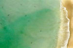 new-smyrna-beach
